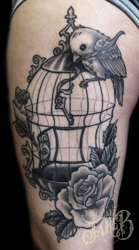 birdcage-healed
